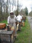 Bruce Bowen making bee hive splits